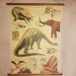 affiche-pedagogique-cavallini-dinosaures-homeschooling-vintage-montessori-enfant