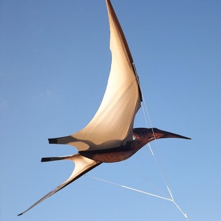 cerf-volant-pterodactyle-jurassic-enfant