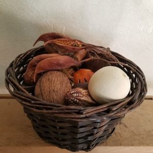 panier-sensoriel-trésors de-la-nature-exotique-bébé-montessori-reggio