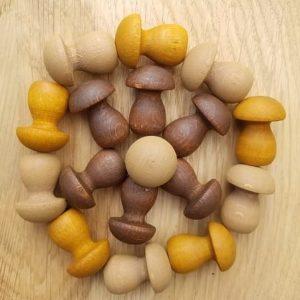 grapat-mandala-champignons-loose-part-bois-reggio-montessori-pédagogie-bois