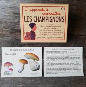 cartes-marc-vidal-japprends-a-reconnaitre-les-champignons-jeu-educatif