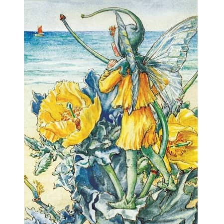puzzle-flower-fairies-new-york-compagny-horned-popy