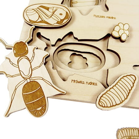 stukapuka-puzzle-insectes -apprentissages
