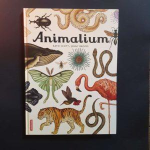 animalium-litterature-jeunesse-ief