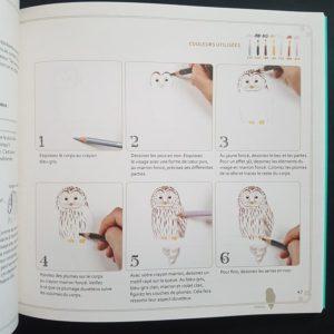 dessiner-des-oiseaux-supermignons-livre-dessiner-enfant