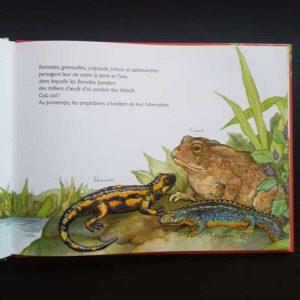 l-odyssée-des-rivières-ohé-la-science-livre-enfant