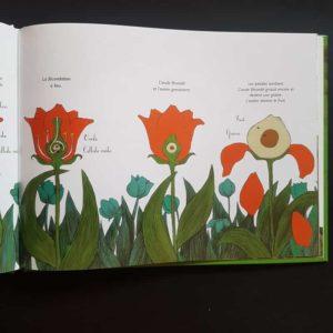 le-voyage-du-pollen-ohé-la-science-livre-enfant