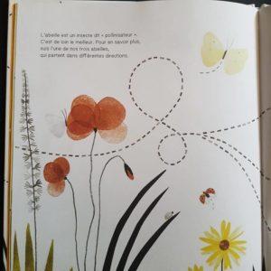 Suis-du-doigt-l-abeille-la-cabane-bleue-album-enfant
