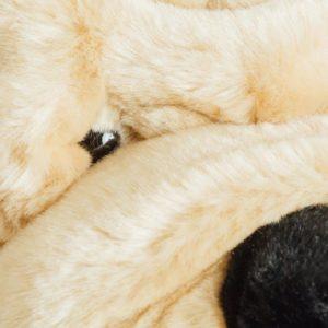 la-pelucherie-chien-doudou-jouet