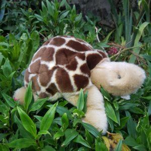 la-pelucherie-tortue-cadeau-naissance