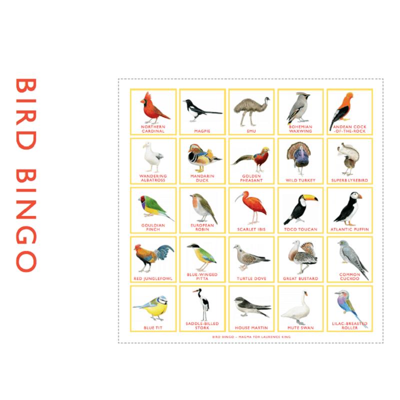 bird-bingo
