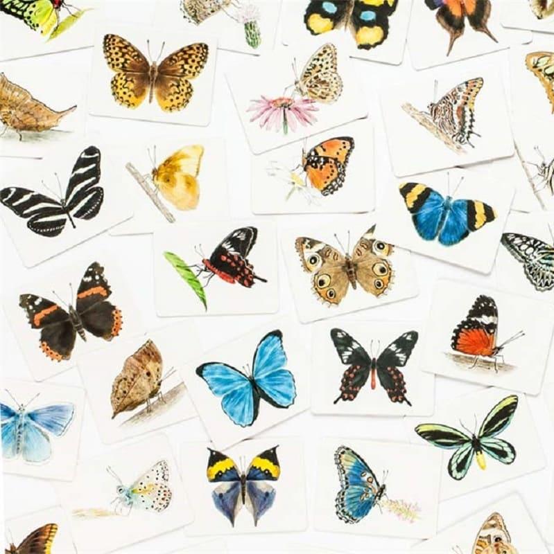 jeu-de-mise-en-paire-butterfly-wings-laurence-king