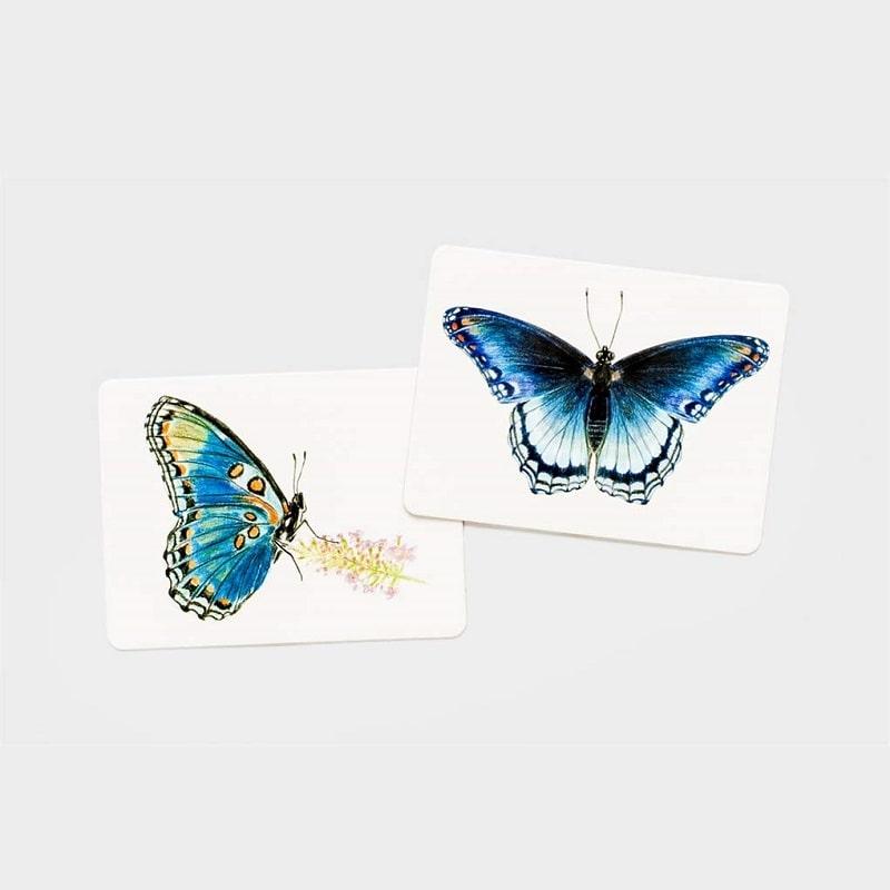 jeu-de-societe-mise-en-paire-butterfly-wings