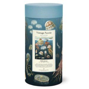 puzzzle-cavallini-meduses-oceanographie