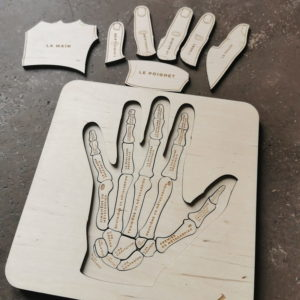 puzzle-bois-stuka-puka-anatomie-main-montessori