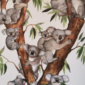21-petites-histoires-naturelles-les-animaux-livre-enfant