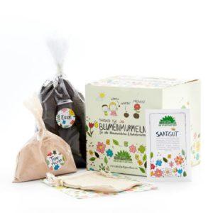 kit-bomes-a-graines-abeilles-die-stadtgartner