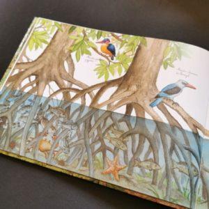les-arbres-qui-font-des-forets-ohe-la-science-livre-enfant