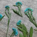 fleur-sechee-pressee-alysson-maritime-bleu-craft-diy-deco