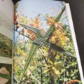 la-vannerie-avec-des-plantes-sauvages-diy